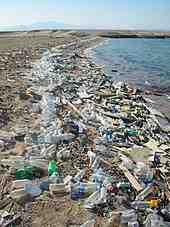 Comment l'homme pollue-t-il l'environnement?