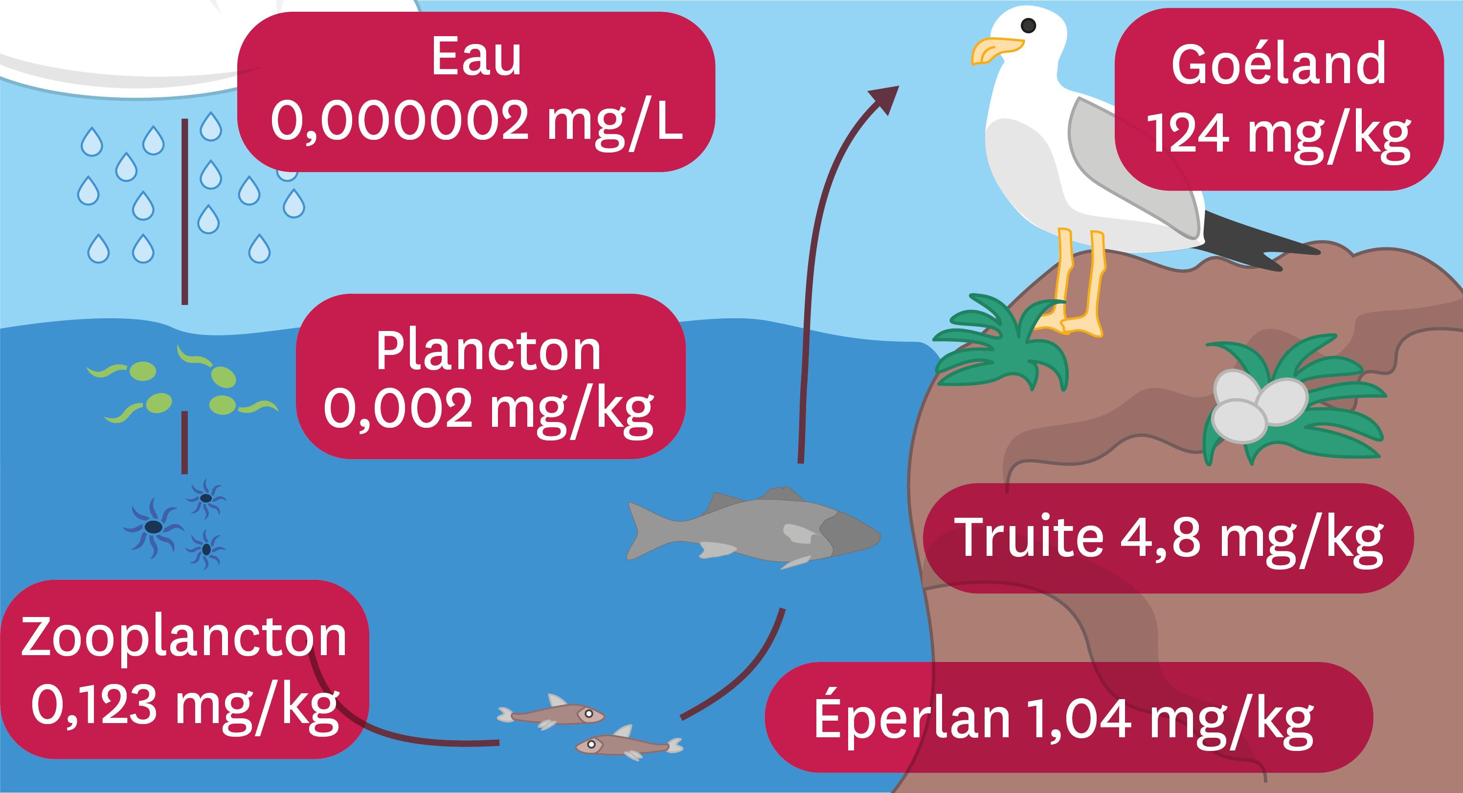 Comment expliquer la nature de la nature?