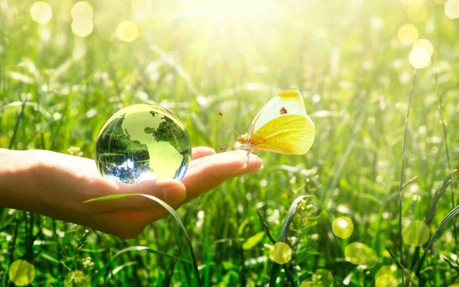 Quel est le rôle de la science dans la préservation de la terre et ses ressources ?