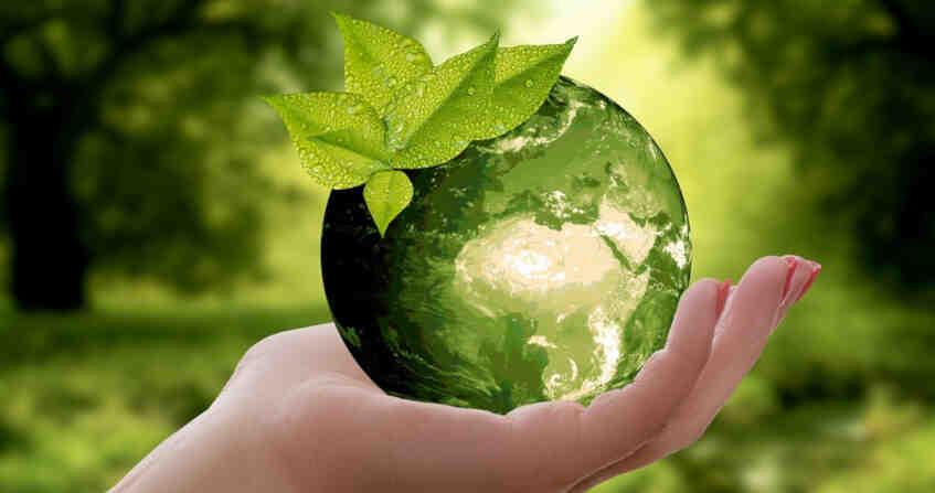 Quelle est l'être vivant le plus pollueur de la planète ?