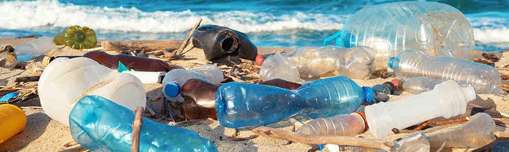 Quelles sont les conséquences de la pollution marine?