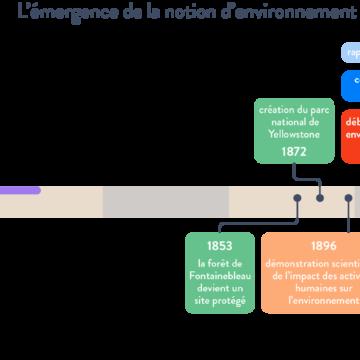 Quelles sont les conséquences des activités humaines sur l'environnement ?