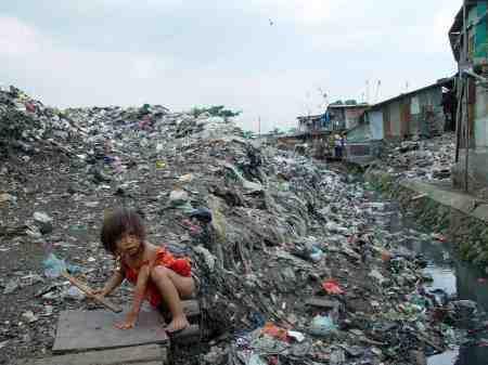 Quelles sont les conséquences des activités humaines sur l'environnement?