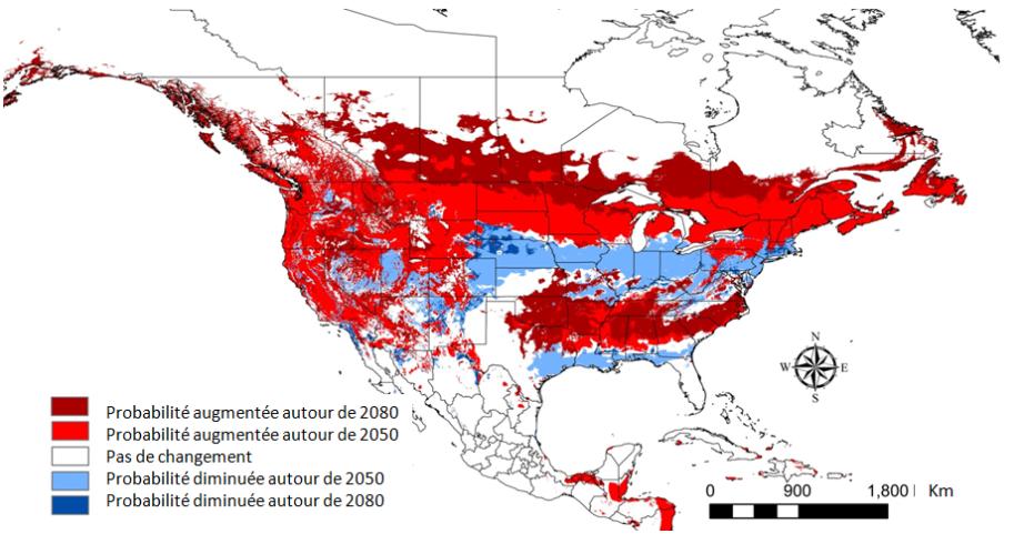 Quelles sont les conséquences des changements climatiques ?