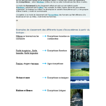 Quels sont les différents types d'écosystèmes ?