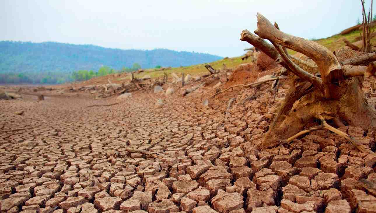 Quels sont les moyens de contrer la dégradation de l'environnement?