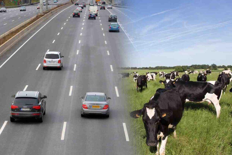 Qu'est-ce qui pollue le plus Transport ?