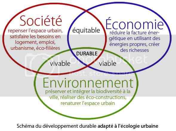Quel est le rôle de l'écologie?