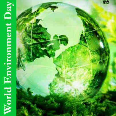 Quel est l'impact humain sur l'environnement?