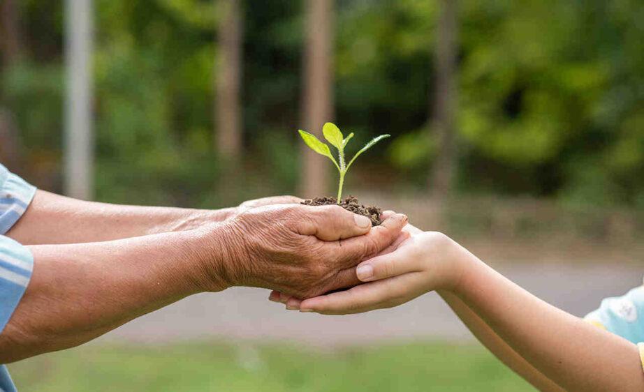 Quel est l'objectif du droit de l'environnement ?
