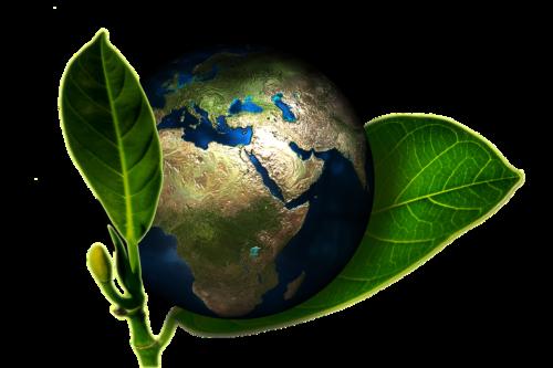 Quelle est la cause première de la dégradation de l'environnement?
