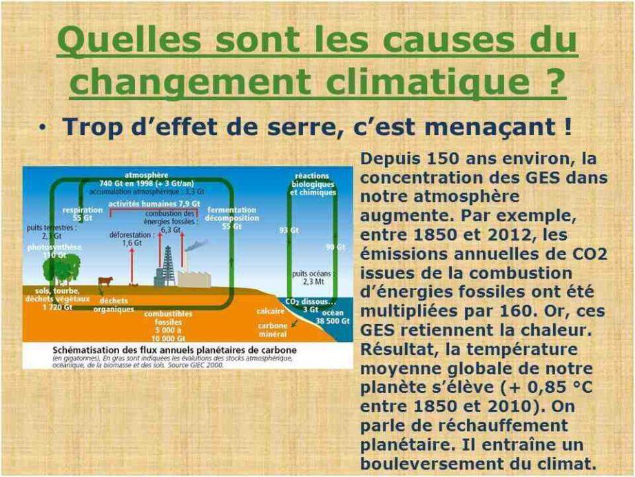 Quelles sont les 4 conséquences du réchauffement climatique ?