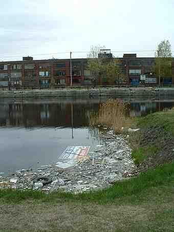 Quelles sont les causes de la pollution de l'eau?