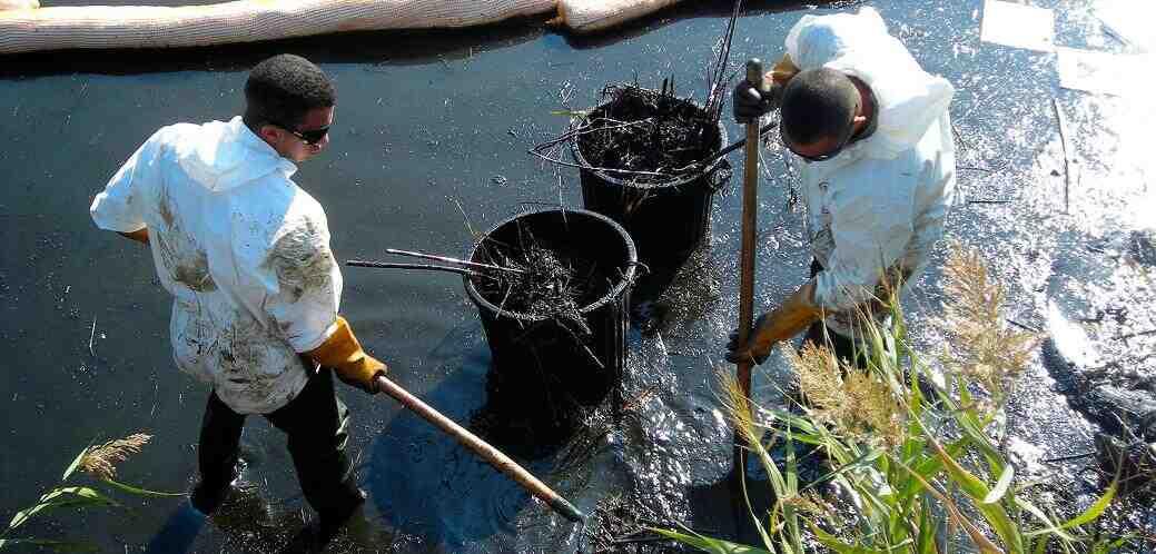 Quelles sont les causes et les conséquences de la pollution de l'eau?