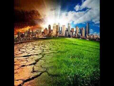 Quelles sont les causes et les conséquences de la pollution?