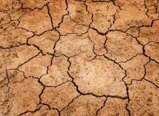 Quelles sont les causes et les conséquences environnementales?