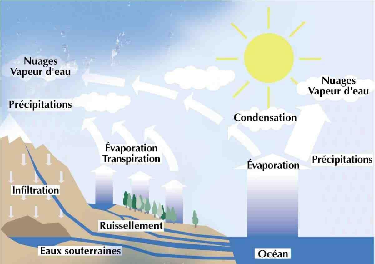 Quelles sont les conséquences des ressources naturelles?