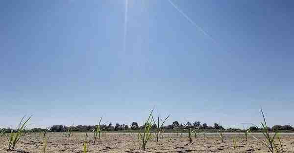 Quelles sont les conséquences du réchauffement climatique et comment limiter notre impact?