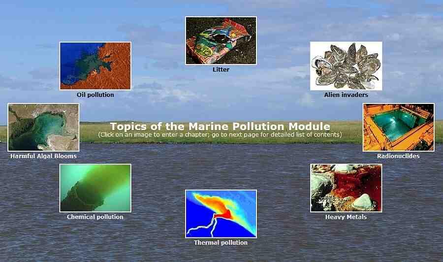 Quelles sont les principales sources de pollution?