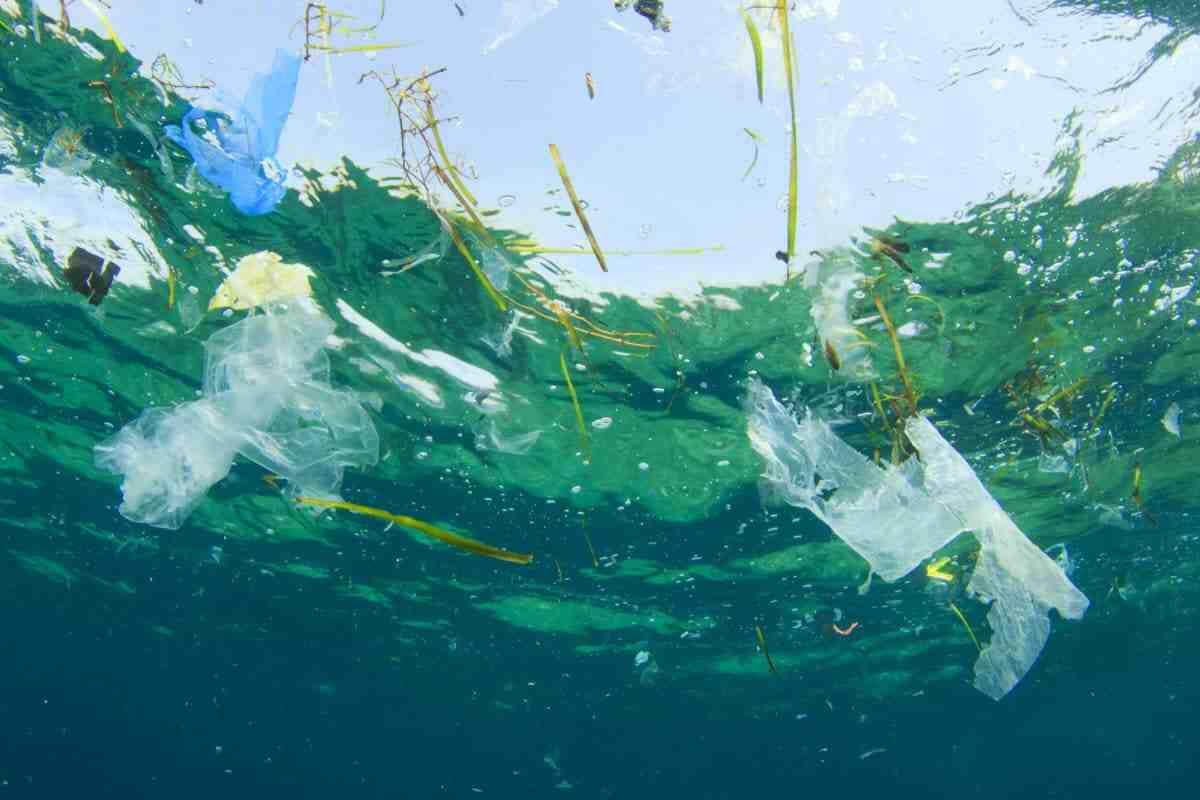 Quels sont les différents types de pollution de l'eau?