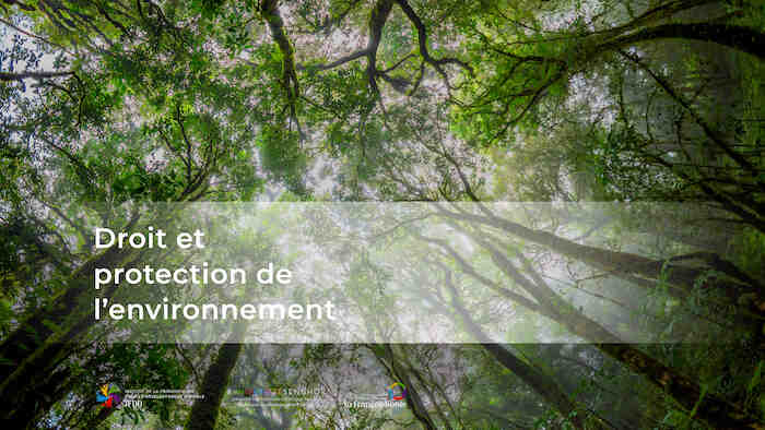 Quels sont les droits pour l'environnement?