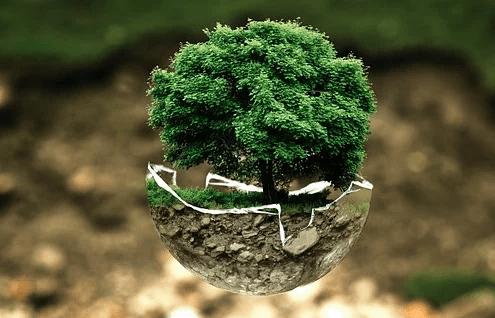 Comment agir au quotidien pour l'environnement ?