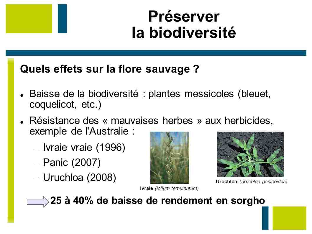 Comment lister la biodiversité?