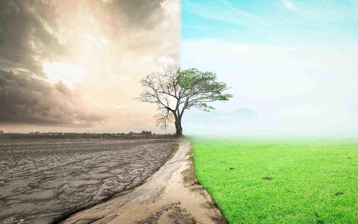 Comment pouvons-nous aider la planète à notre échelle?