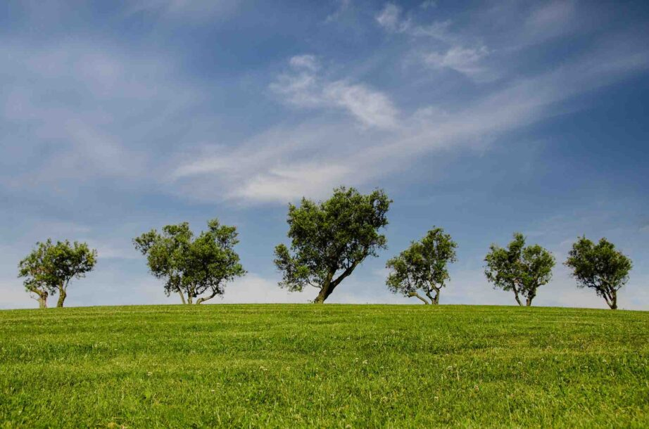 Comment préserver et protéger notre planète ?