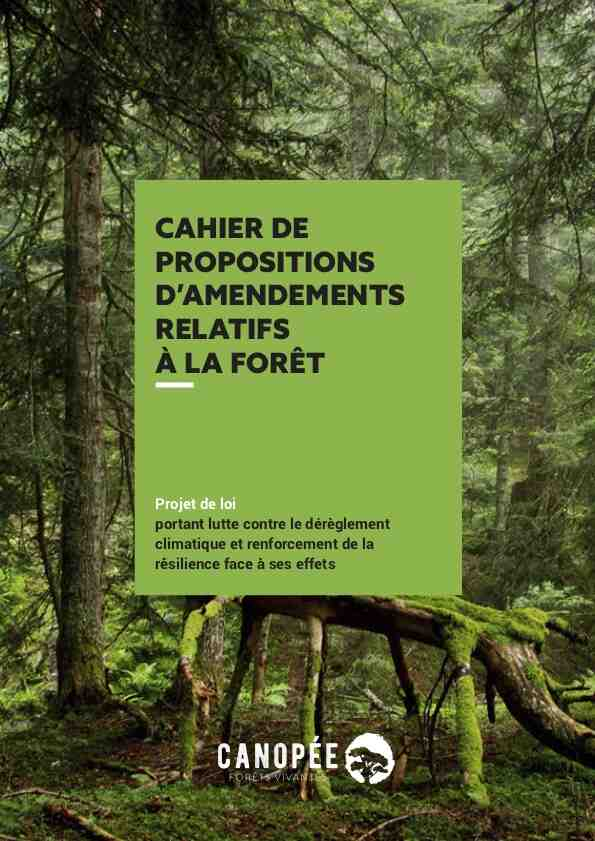 Comment protéger la forêt?
