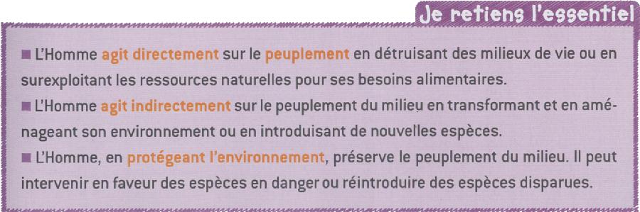 Comment protéger l'environnement de Wikipédia?