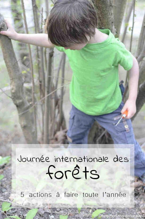 Comment utiliser la forêt tout en protégeant l'environnement?