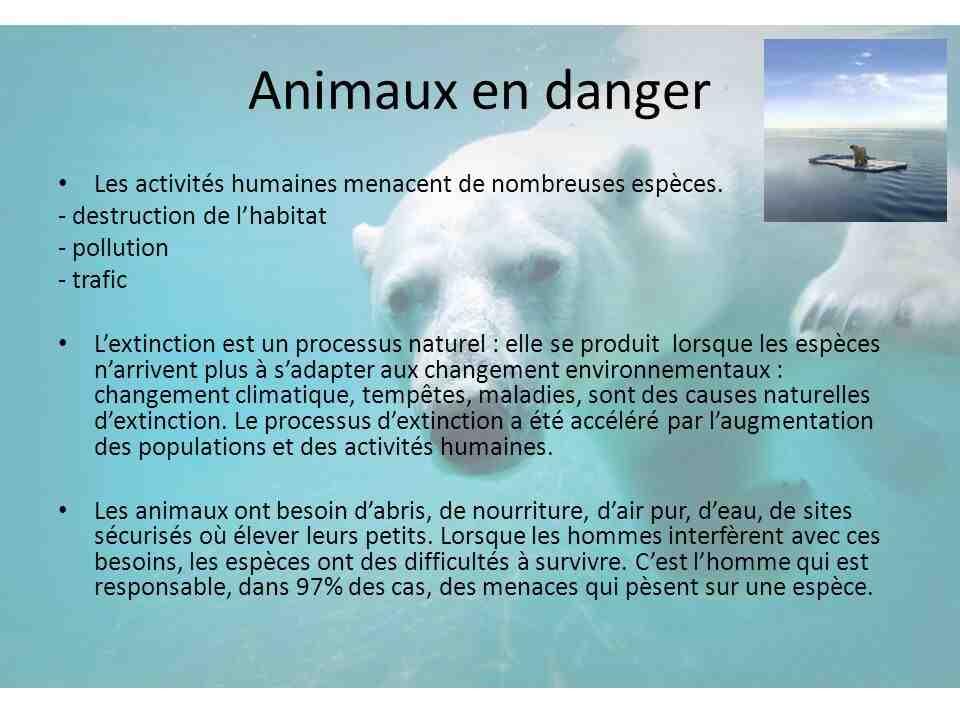 Notre planète est-elle en danger?