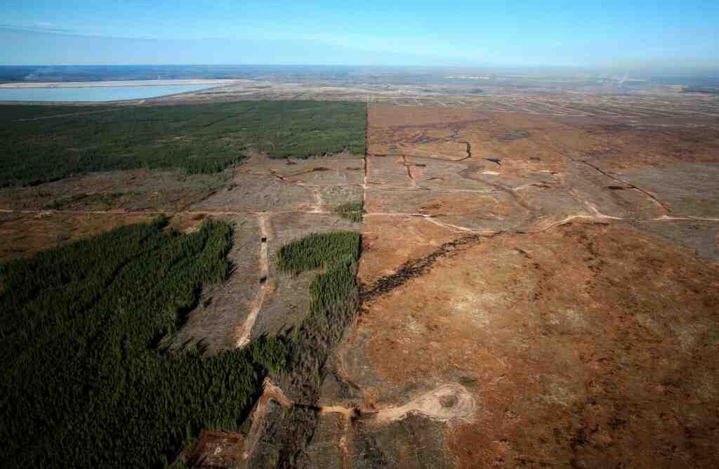 Pourquoi et comment protéger l'environnement?
