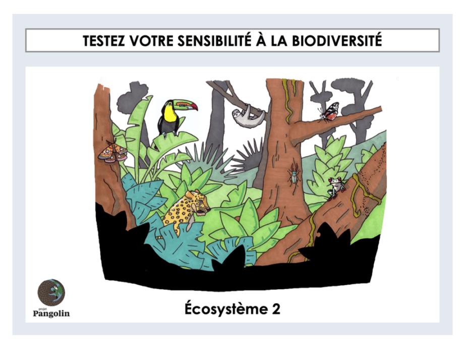 Pourquoi il est nécessaire de protéger la biodiversité ?