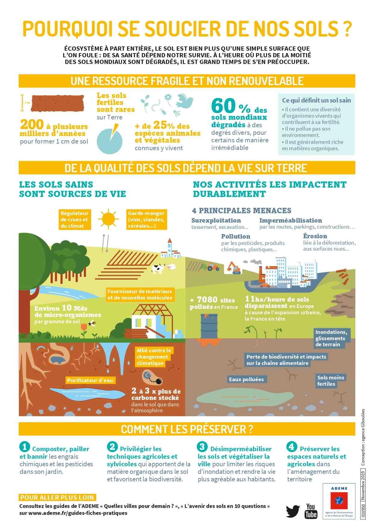 Quelles sont les causes et les conséquences de la perte de biodiversité?
