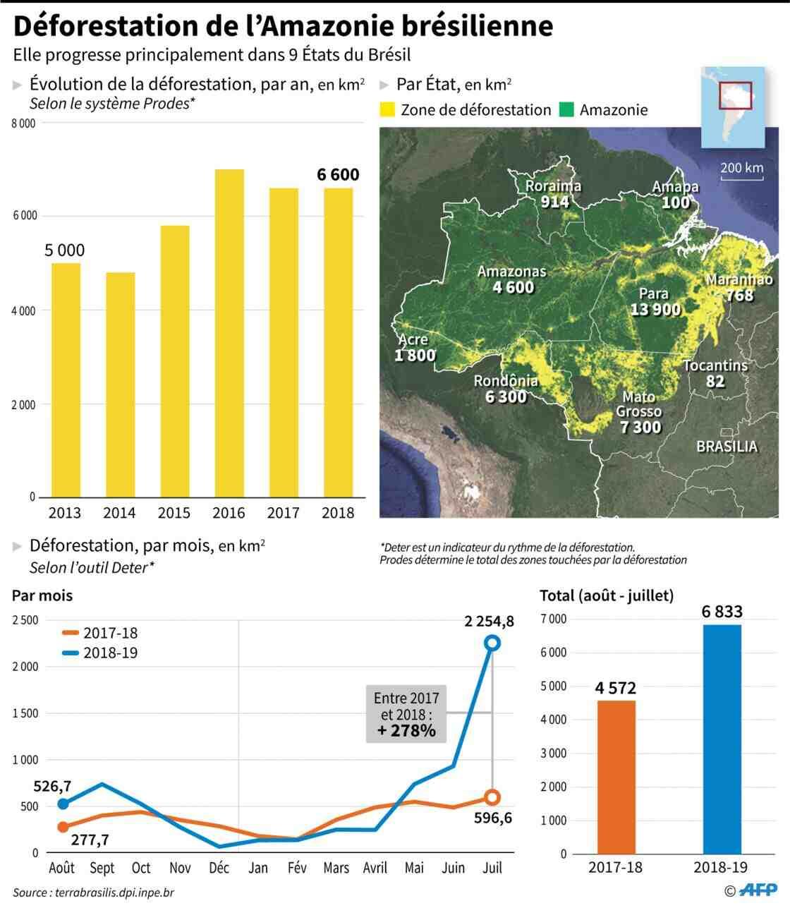 Quelles sont les conséquences de la déforestation?