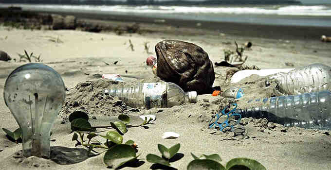 Quelles sont les principales causes de la dégradation de l'environnement?