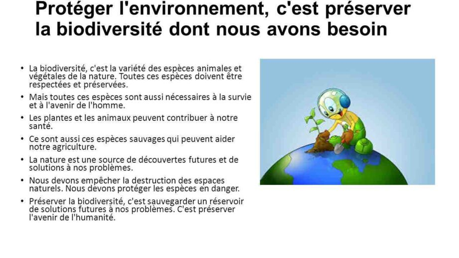 Quelles sont les solutions pour protéger l'environnement ?