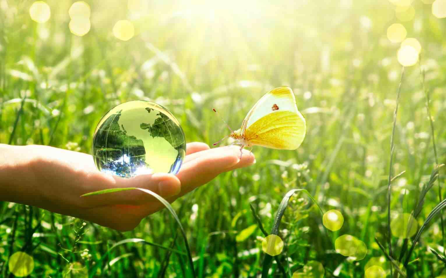 Quels sont les enjeux du développement durable en termes de croissance économique?