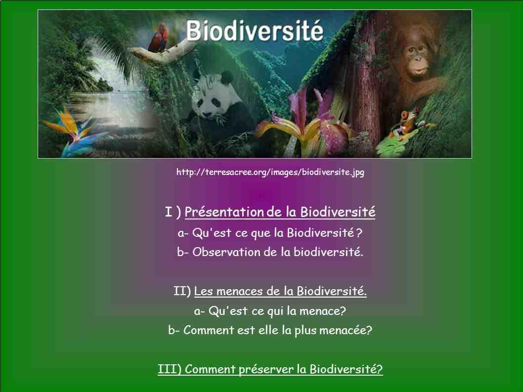 Quels sont les moyens de conserver la biodiversité?