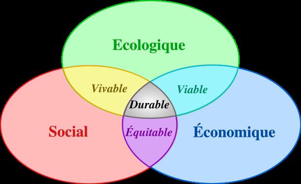 Qu'est-ce que l'environnement écologique ?