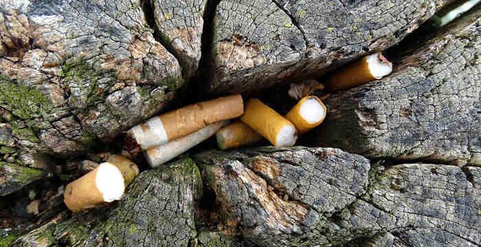 Comment les gens polluent l'environnement?