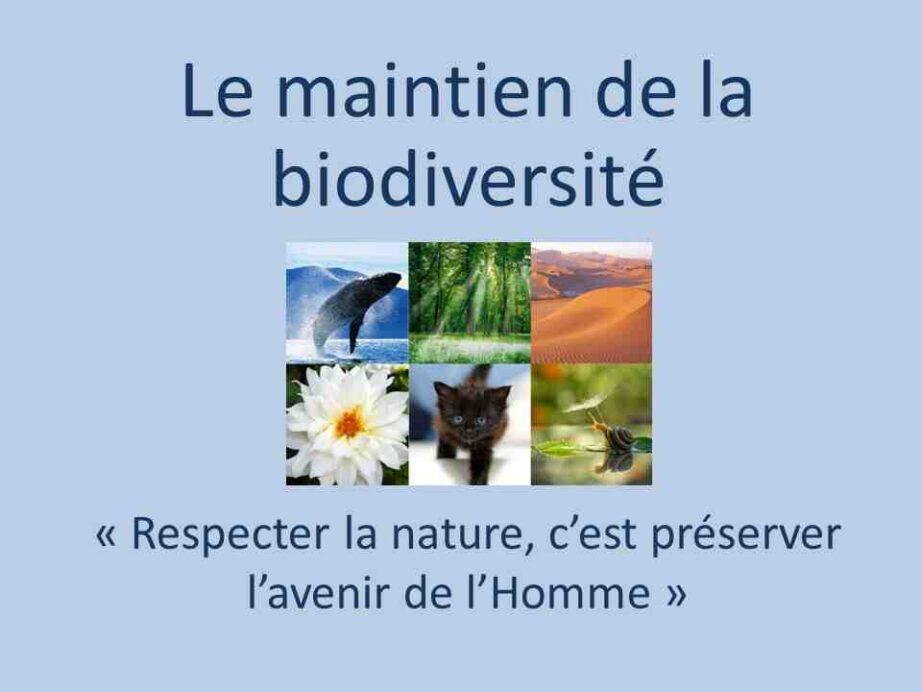 Comment l'homme peut protéger la nature ?