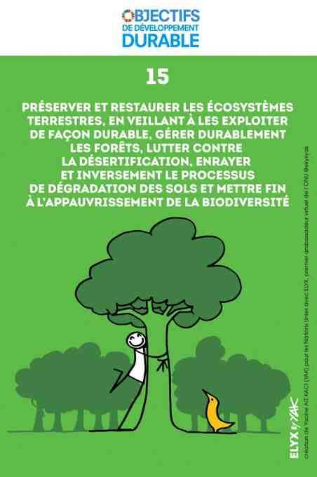 Comment protégez-vous l'environnement et les animaux ?