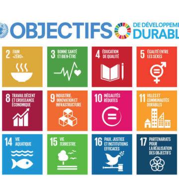 Comment sensibiliser les jeunes au développement durable ?