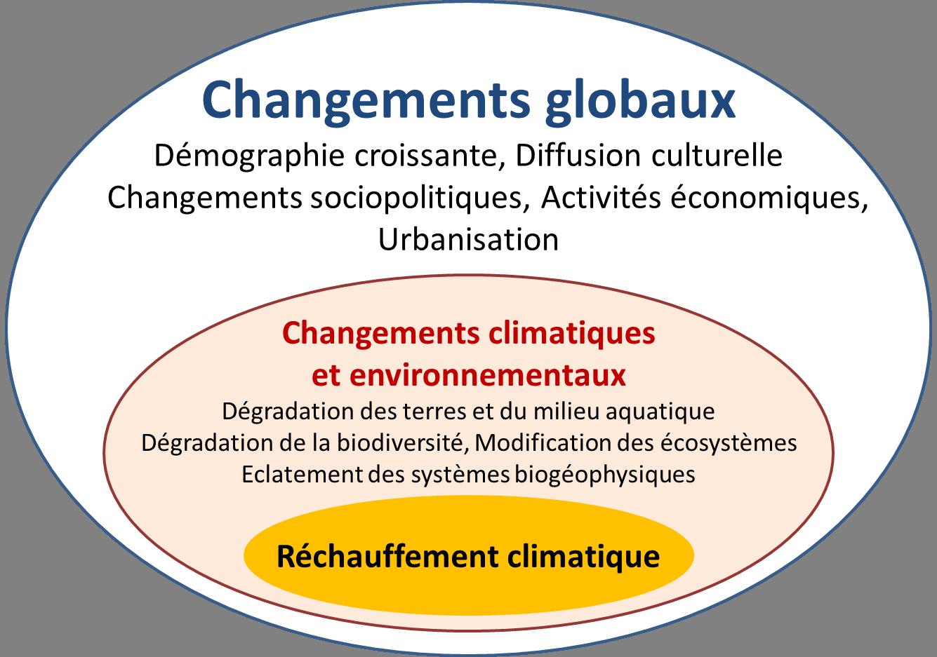 Quel est l'impact de l'entreprise sur l'environnement ?