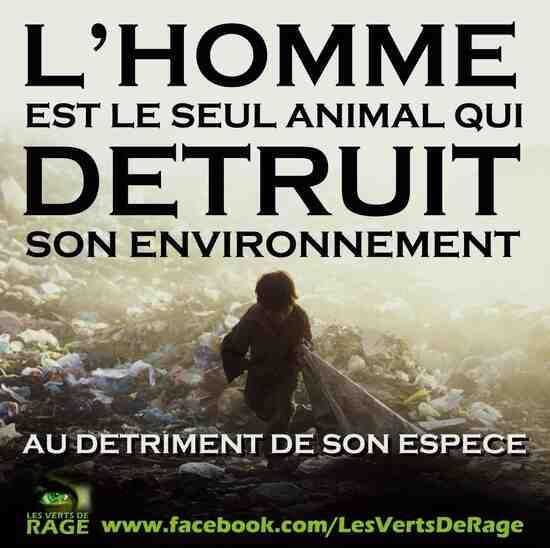 Quel est l'impact de l'homme sur l'environnement ?