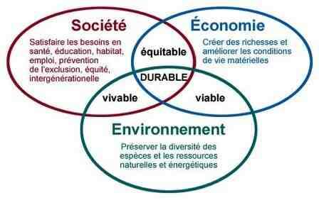 Quel est l'impact du développement durable sur les entreprises ?