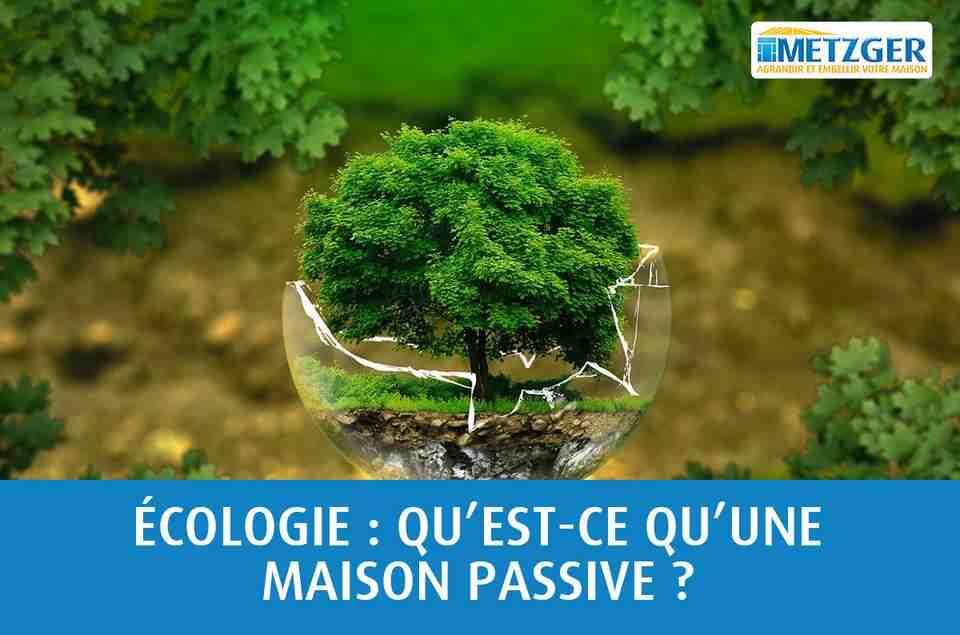 Quelle est la forme du mot environnement ?